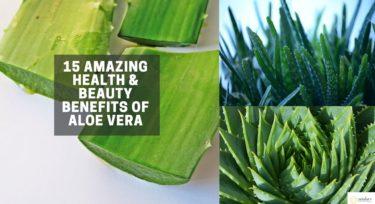 15 Amazing Health & Beauty Benefits of aloe vera