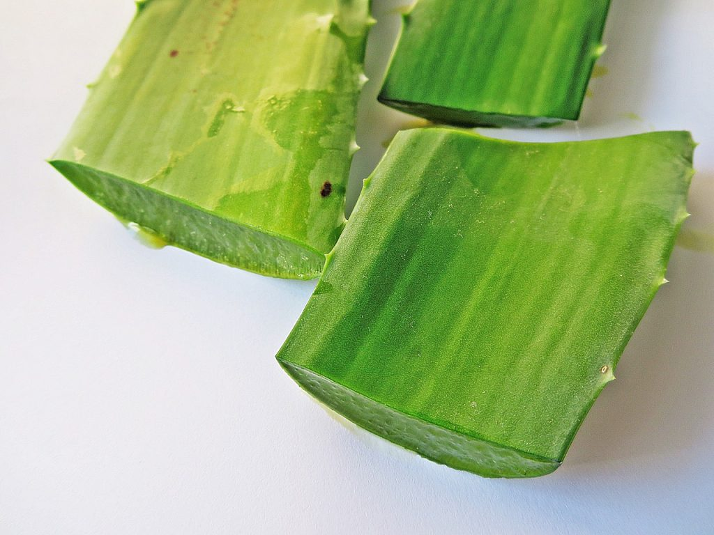 beauty benefits of aloe vera gel