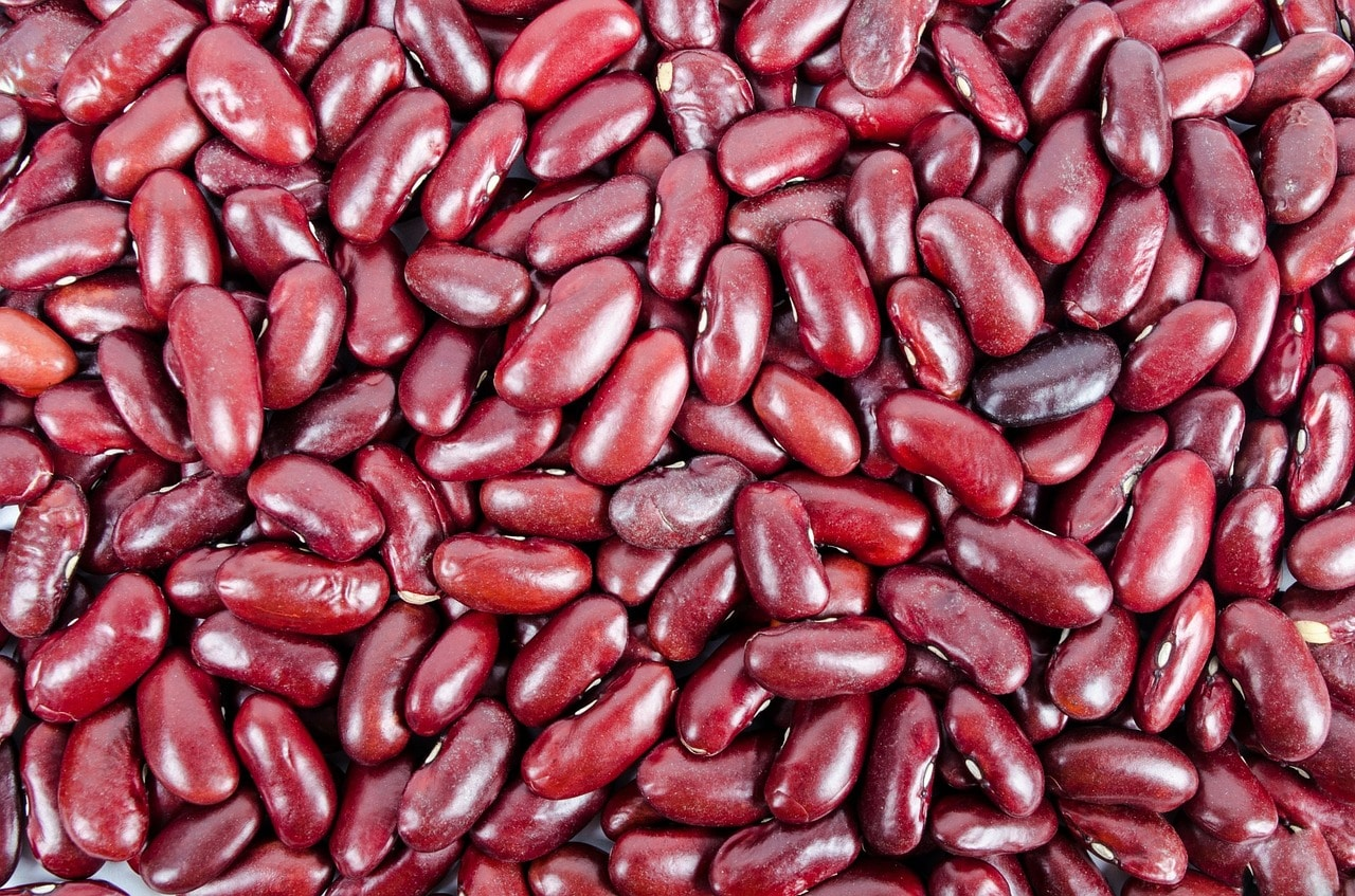 Nutrition Facts and Benefits of Kidney Beans / Rajma