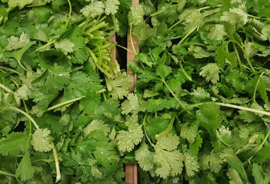 substitutes for lemongrass