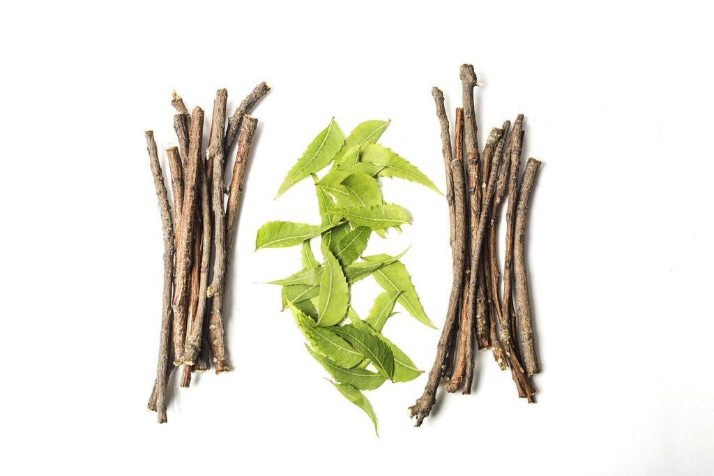 ayurvedic diet and its benefits