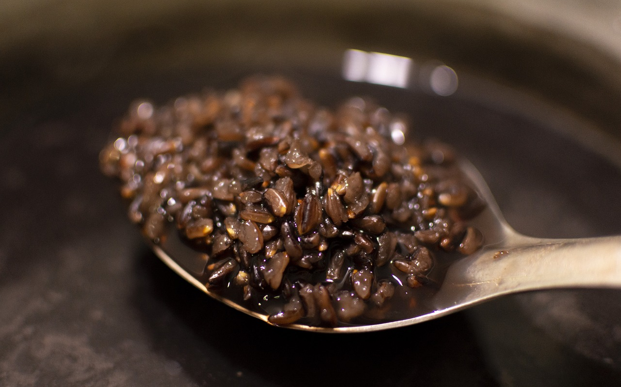 black rice and antioxidant