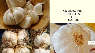 garlic for eyesight_ 14 amazing benefits of garlic