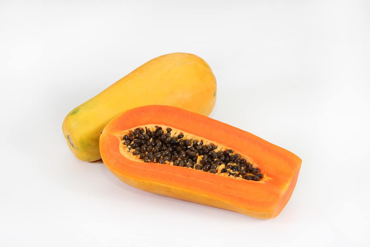 papaya and digestion