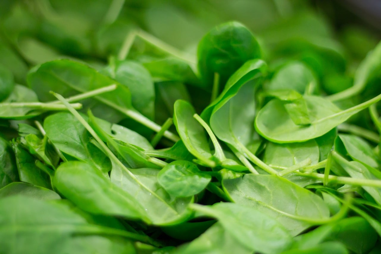 green vegetables for your winter diet