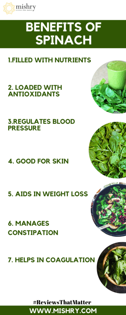 Benefits of Spinach: All Reasons To Add Palak To Your Daily Diet