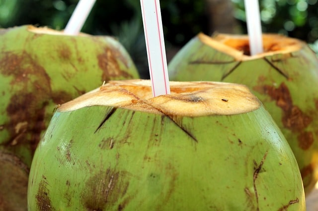 Best Brands Of Packaged Coconut Water in India