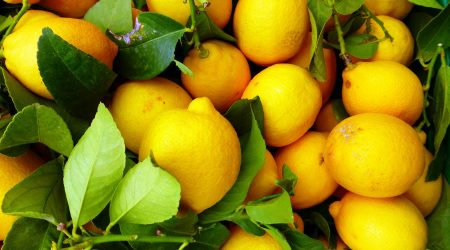 lemons as an air freshener