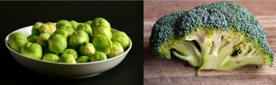 Brussel Sprouts vs Broccoli - A Well Drawn Parallelism Of The Two Essential Greens