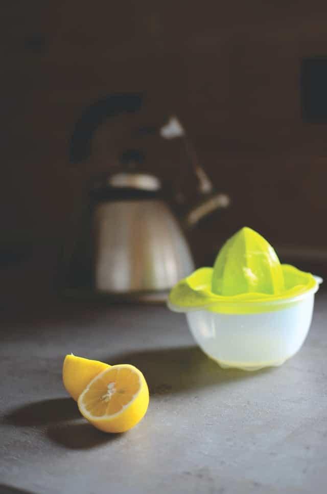 manual citrus juicer